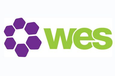 womens engineering society logo