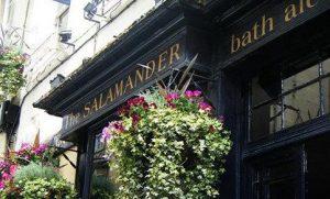 the-salamander