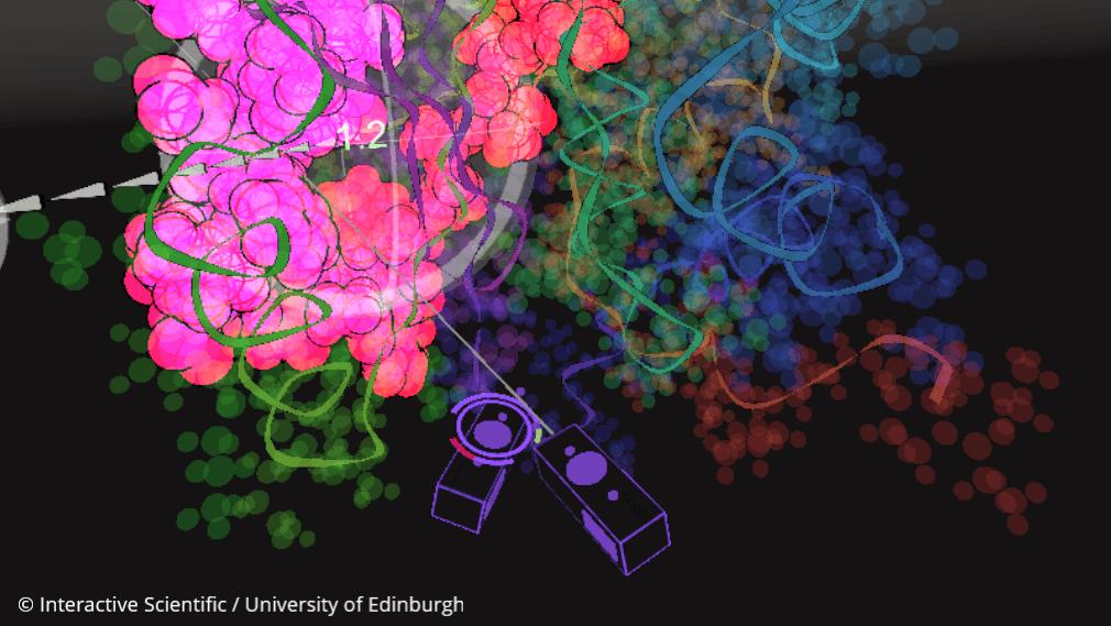Interactive Scientific utilising virtual reality for ensemble-based drug design