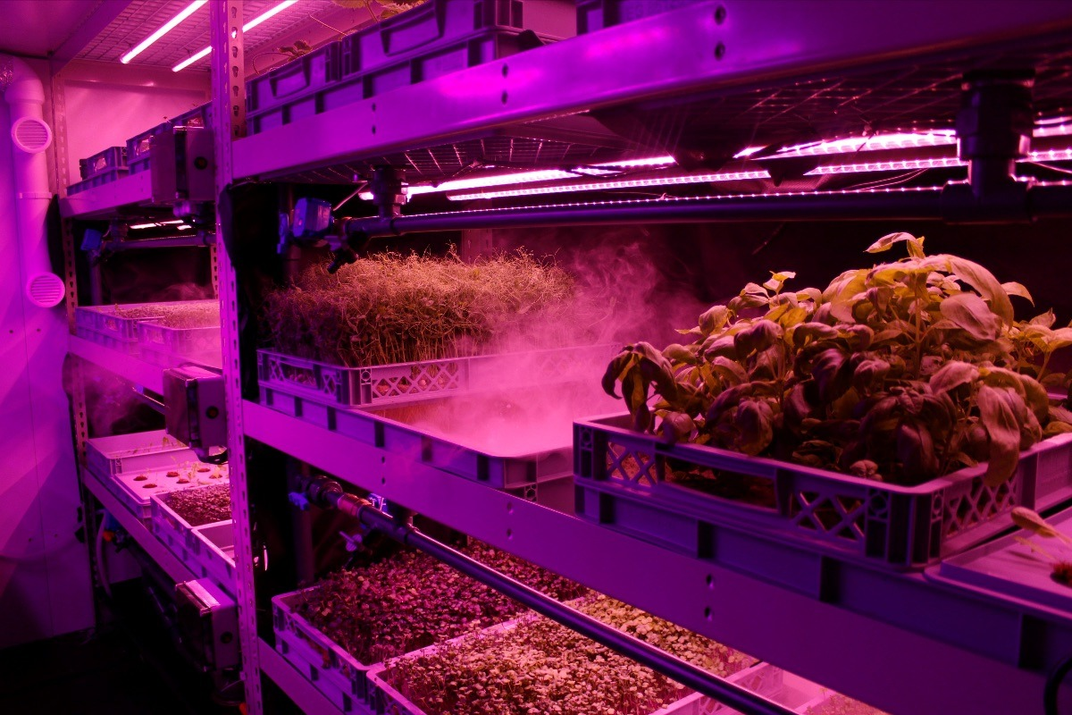 LettUs Grow and Octopus Energy for Business partner to build a more sustainable vertical farming industry