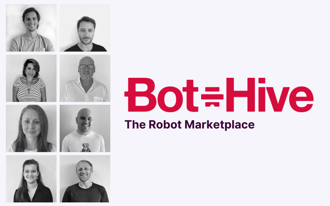 Silicon Gorge Profile: Bot-Hive